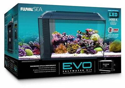 Fluval Sea EVO Saltwater Aquarium Kit 13.5 Gallon