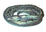 Realistic Snake