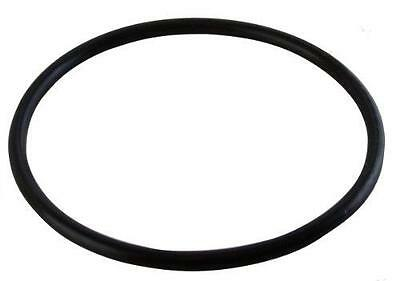 O-ring 2-pack Replacement For Hayward Chlorinator Lid CL200/220 CLX200K O-231