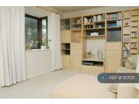 1 bedroom flat in Bridge Park, London, SW18 (1 bed) (#1117011)
