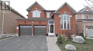 74 BAYRIDGE DR Brampton, Ontario