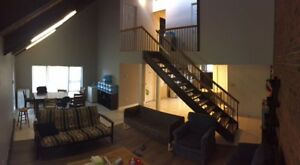 10 Hickory Newly renovated Loft unit (4 month summer term)