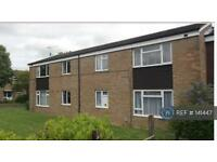 1 bedroom in Beverly Road, Stevenage, SG1