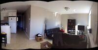 Sunny New 2 bedroom Suite West Sechelt