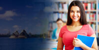 Looking for assignment help service