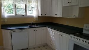 3 Bedroom Main Floor Avalon Mall, HSC and MUN Avail. July 1st