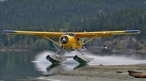 Float plane for wedding!  Kawartha Lakes Peterborough Area image 1