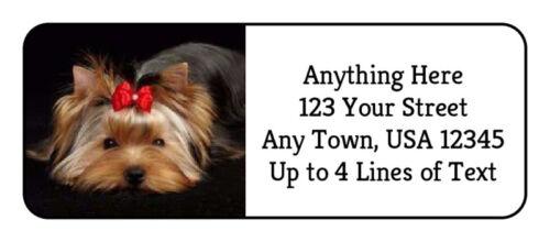 60 Yorkie #21 Yorkshire Terrier Dog Puppy GLOSSY Photo Return Address Label