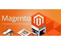 Bespoke Magento Web Development by Magento-Plus Certified Developers & Maintenance