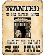 WANTED ELEPHANTS Queanbeyan Queanbeyan Area Preview