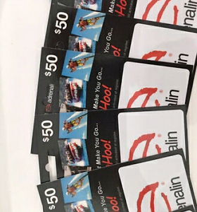 10 X $50 Adrenalin gift cards $40 each or $350 the lot Nerang Gold Coast West Preview