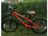 """Boys 20"""" Bike_only £55, Excellent condition"""