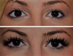 Master Lash Stylist Book NOW for your Xmas Spot! Only $50.00!.