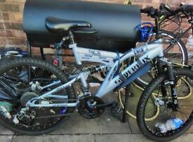 Silver fox bike