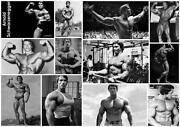 Arnold Schwarzenegger Poster Bodybuilding
