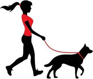 I want to walk YOUR  dog!! Wynyard Waratah Area Preview