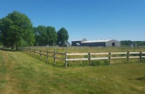 Looking for stall cleaner or barn manager