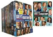 Grey s Anatomy DVD Season 3