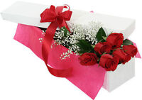 Valentine's Day Special; Dozen of Long Stem Roses $50