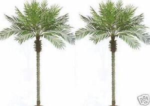 Artificial Palm Tree 8