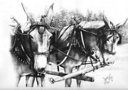 Mule Print
