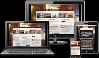 Professional website design – Ecommerce - Modifications included
