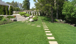 LAWN CARE BY DOM - Complete Lawn Maintenance and More...