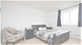 VERY GOOD SIZE ROOM TO RENT!