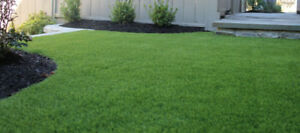 "**Premium Sod Installation** ""Bring Your Homes to Life""!"