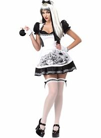 Dark Alice Adult Fancy Dress Costume