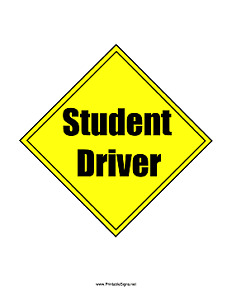 Driving instructor