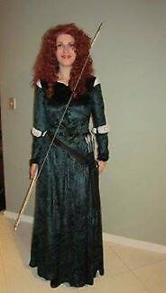 FOR HIRE   MERIDA COSTUME (BRAVE)   FITS AN 8-10
