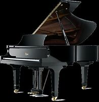 Piano and Theory Lessons from Experienced and Qualified Teacher