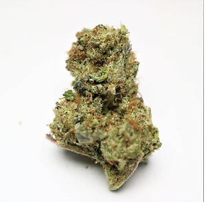 Get Your Dose of Canada Online Weed at Healing Buddha