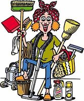 *** THE CLEANING LADY ***