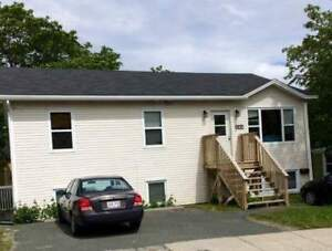 Next to MUN for Sept. 1st - large, bright 4-bedroom apt