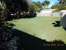 Property to Rent. 3BDRM House. Buderim. Pets Aloud Buderim Maroochydore Area Preview