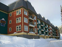 #468-155 Silver Lode Lane, Vernon BC - Top Floor Unit At The Sil