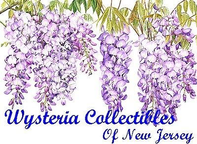 Wysteria Collectibles of NJ