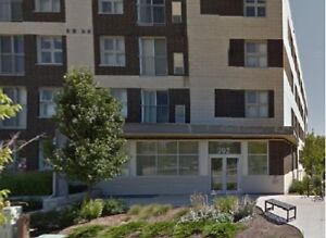 5-bedroom apartment with ensuite bathrooms at 392 Albert St.
