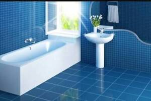 Help! Whats the best cleaning services in Brisbane? Local?