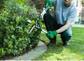 Garden service/ garden mentenance or cleaning