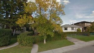 Springbank Homes Wanted