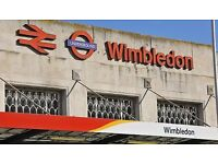 Lovely Nanny Sought for Family in Wimbledon - Great Salary