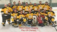 Mens Over 30 Adult Hockey League