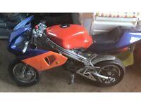Mini moto summer bargain