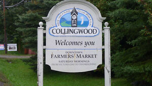 Rentals in Collingwood,The Blue Mountains,Meaford, Wasaga Beach