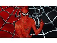 Super Hero Party MEET GREET Batman Iron Man Spider HULK HIRE MASCOT Childrens Kids IDEAS Appearance