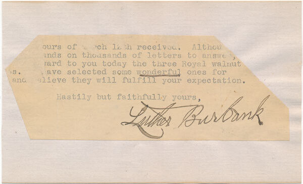 Luther BURBANK / Typed Note Signed