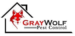 Same Day Wasp And Spider Treatments, Insect and Rodent Control Windsor Region Ontario image 1